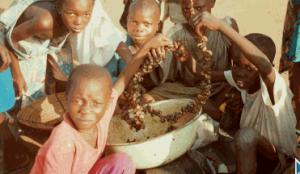 Cъдобные насекомые решают проблему голода детей
