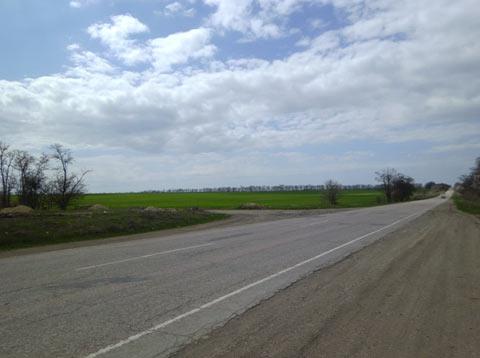 Дорога и поля. Поля зеленые