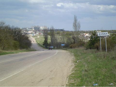 Дубки на николаевской трассе