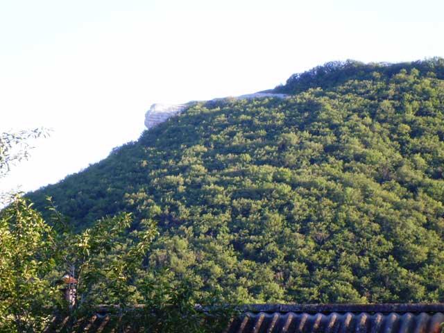 Гора и лес в малиновке похожая на голову льва