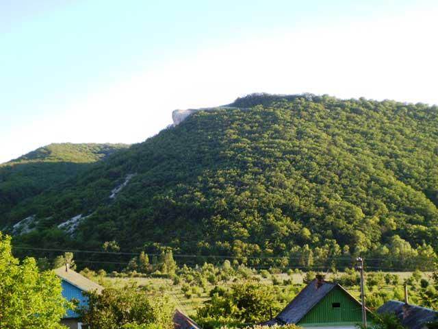 Гора и лес в Малиновке
