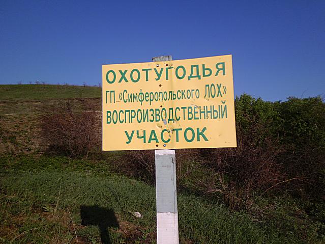 Охотугодья в Курцах.Вокруг поля,а внизу озеро