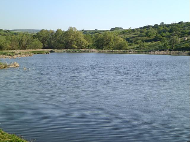 Озеро за Курцами стало платным