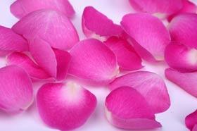 Розовые лепестки в духах L'AMBRE №23